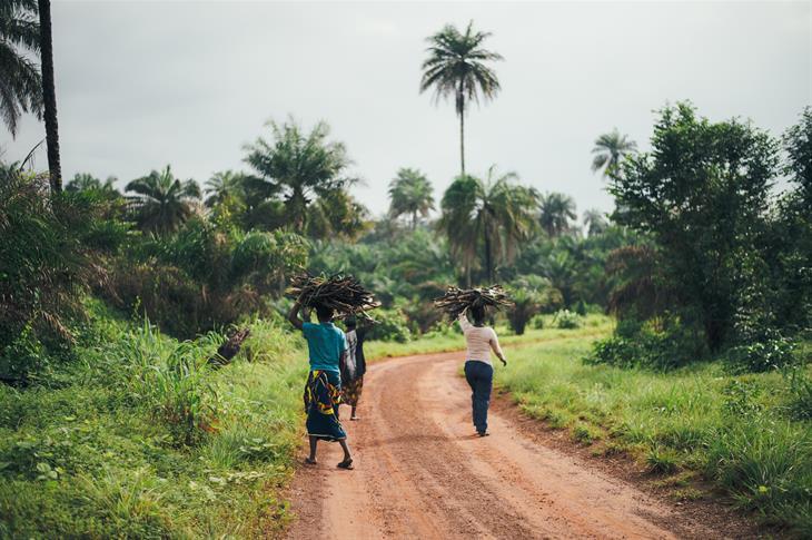 Africa Unsplash
