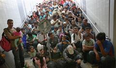 Migration Amnesty